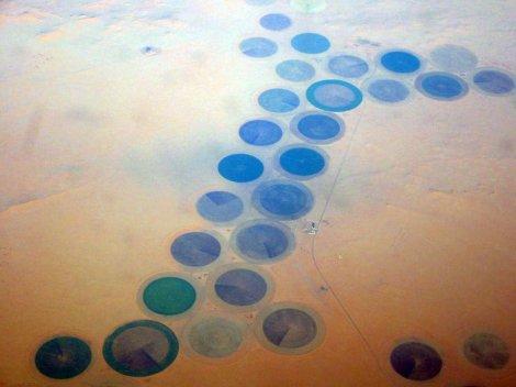 Libyan_pivot_irrigation_460142568_02e969004a_o